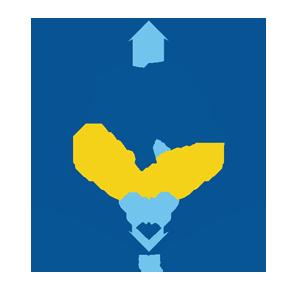 Vaniglia & Cannella